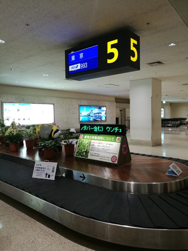 ANA羽田沖縄エコノミークラス8