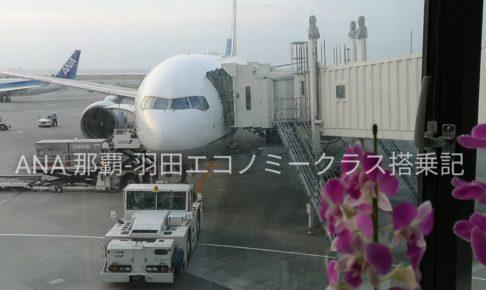 ANA那覇羽田エコノミークラス搭乗記アイキャッチ