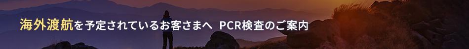 JAL国際線PCR検査案内